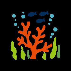 化石サンゴカルシウムを使用した人たちの口コミ