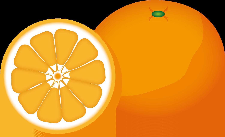 みかんやゆずなどの柑橘系植物