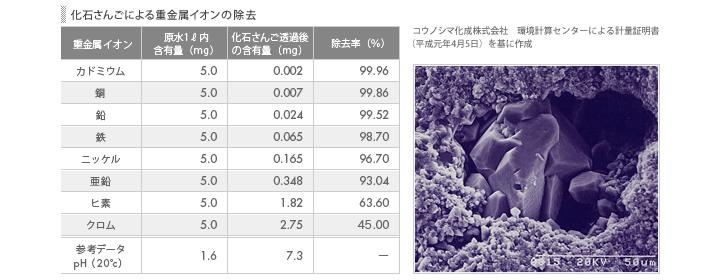 化石サンゴのカルシウムにはデトックス効果があり、体内を綺麗にしてくれる