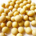 大豆イソフラボンと葉酸で妊婦さんの強い味方