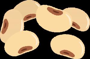 ママジュンビーに配合されているアグリマックスは、大豆イソフラボン