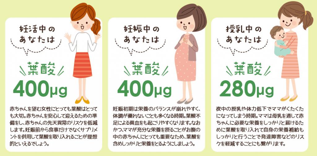 妊活中、妊娠中、授乳中の女性の葉酸摂取推奨量