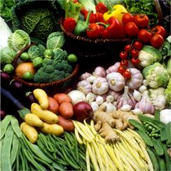 22種類の野菜