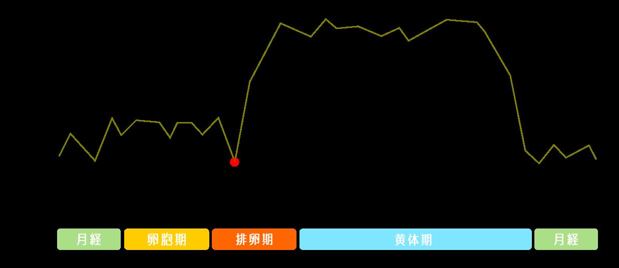 基礎体温グラフの理想型