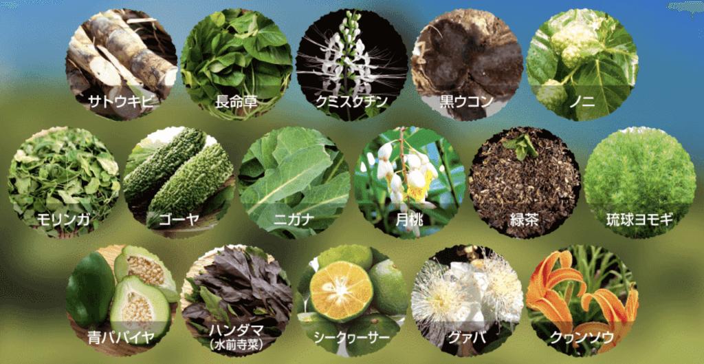 ここるに配合されている16種類の沖縄野菜